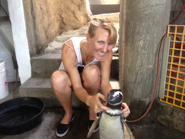 have you hugged a penguin today?
