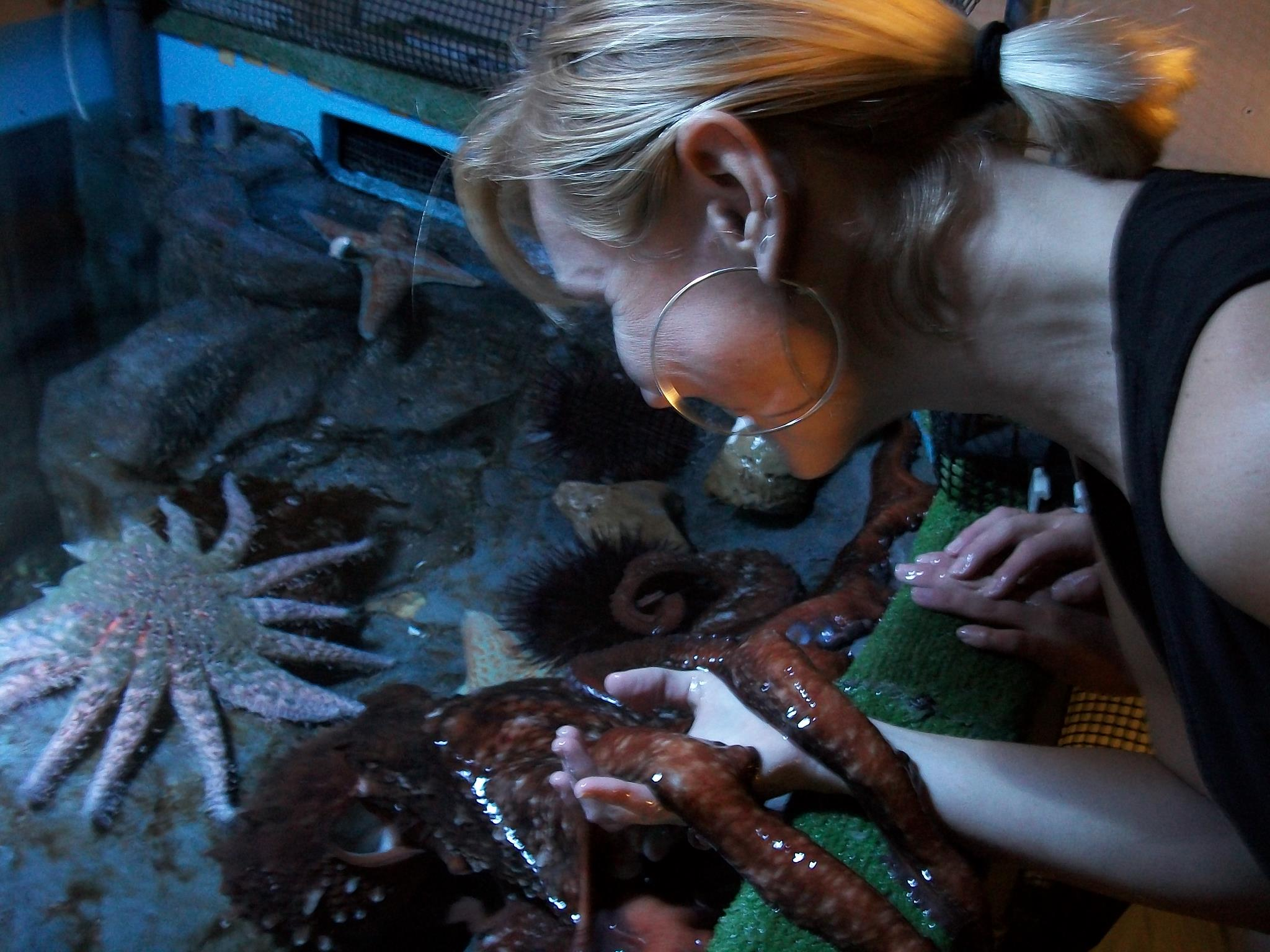 Biggest octopus in the world ever recorded