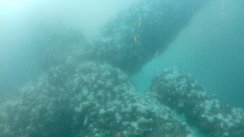 geometric structure, underwater space ship...Nicholli Gan