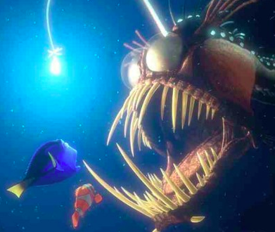 recognize this fish from Finding Nemo?