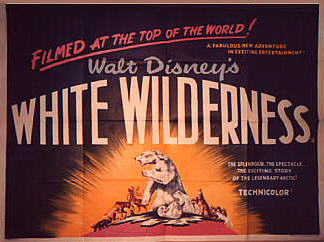 white_wilderness